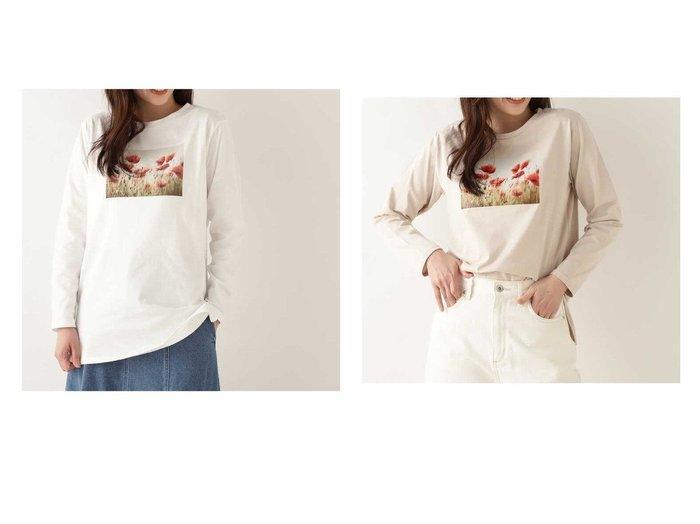 【NATURAL BEAUTY BASIC/ナチュラル ビューティー ベーシック】のフォトプリントオーガニックコットンロンT 【トップス・カットソー】おすすめ!人気、トレンド・レディースファッションの通販 おすすめファッション通販アイテム レディースファッション・服の通販 founy(ファニー) ファッション Fashion レディースファッション WOMEN トップス・カットソー Tops/Tshirt ロング / Tシャツ T-Shirts おすすめ Recommend インナー カーディガン プリント |ID:crp329100000028816