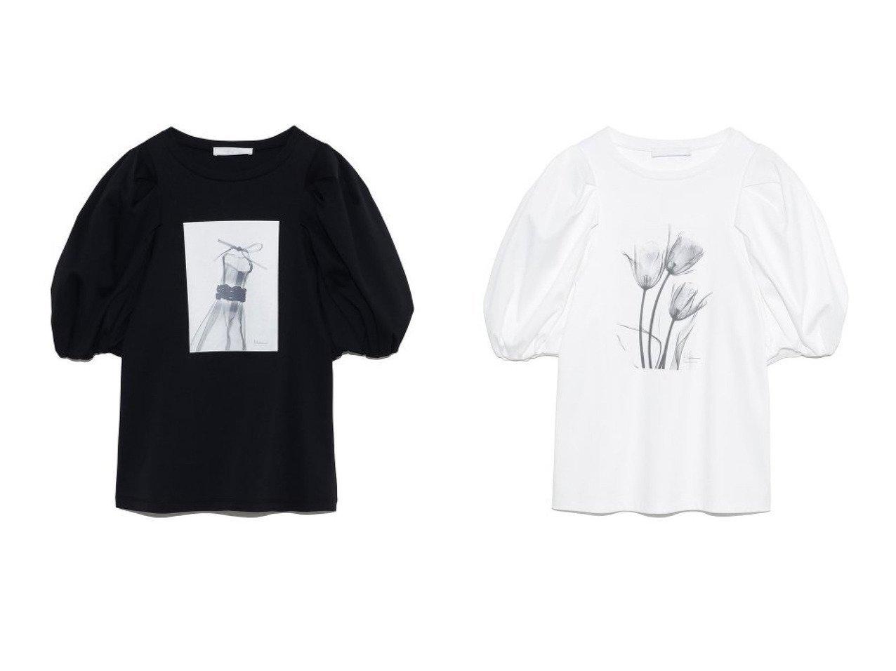 【CELFORD/セルフォード】のAlbert Koetsierボリューム袖Tシャツ 【トップス・カットソー】おすすめ!人気、トレンド・レディースファッションの通販 おすすめで人気の流行・トレンド、ファッションの通販商品 インテリア・家具・メンズファッション・キッズファッション・レディースファッション・服の通販 founy(ファニー) https://founy.com/ ファッション Fashion レディースファッション WOMEN トップス・カットソー Tops/Tshirt シャツ/ブラウス Shirts/Blouses ロング / Tシャツ T-Shirts カットソー Cut and Sewn カットソー シルク シルケット スリーブ チューリップ ドレス プリント |ID:crp329100000041771