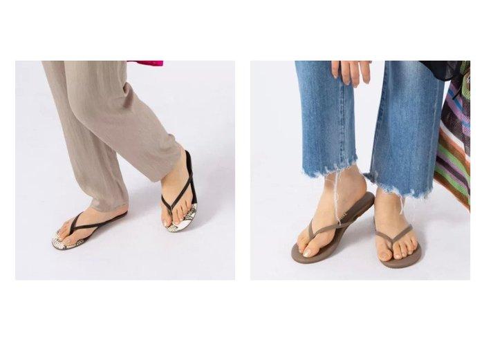 【NOLLEY'S/ノーリーズ】の【 ティーキーズ】FRENCH TIPS&【 ティーキーズ】LINERS 【シューズ・靴】おすすめ!人気、トレンド・レディースファッションの通販 おすすめ人気トレンドファッション通販アイテム 人気、トレンドファッション・服の通販 founy(ファニー) ファッション Fashion レディースファッション WOMEN エレガント サンダル シューズ シンプル ビーチ リゾート |ID:crp329100000048154
