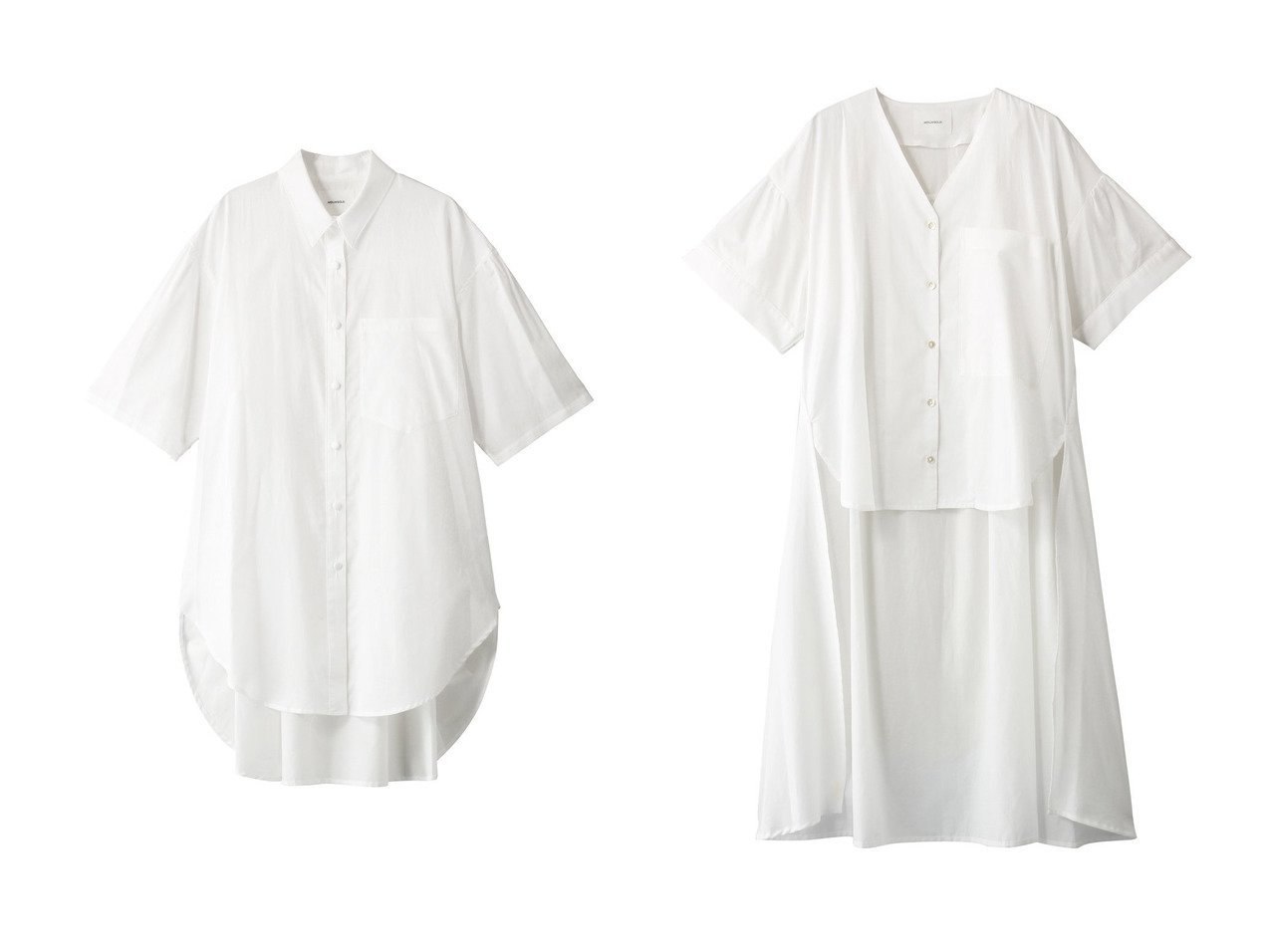 【MIDIUMISOLID/ミディウミソリッド】のシャツ&シャツ 【トップス・カットソー】おすすめ!人気、トレンド・レディースファッションの通販 おすすめで人気の流行・トレンド、ファッションの通販商品 インテリア・家具・メンズファッション・キッズファッション・レディースファッション・服の通販 founy(ファニー) https://founy.com/ ファッション Fashion レディースファッション WOMEN トップス・カットソー Tops/Tshirt シャツ/ブラウス Shirts/Blouses ショート シンプル スリーブ フェミニン 半袖 |ID:crp329100000049488