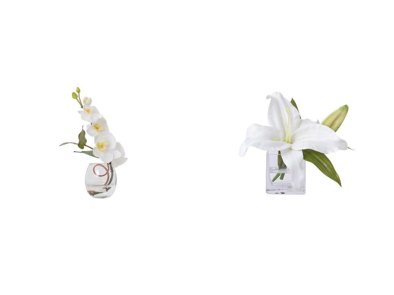 【EMILIO ROBBA/エミリオロバ】のファレノプシス #103123&カサブランカ #103111 【FURNITURE 花瓶・フラワーベース】おすすめ!人気、インテリア雑貨・家具の通販 おすすめで人気の流行・トレンド、ファッションの通販商品 インテリア・家具・メンズファッション・キッズファッション・レディースファッション・服の通販 founy(ファニー) https://founy.com/ エレガント コレクション シリコン リーフ フラワー モダン  ID:crp329100000052378