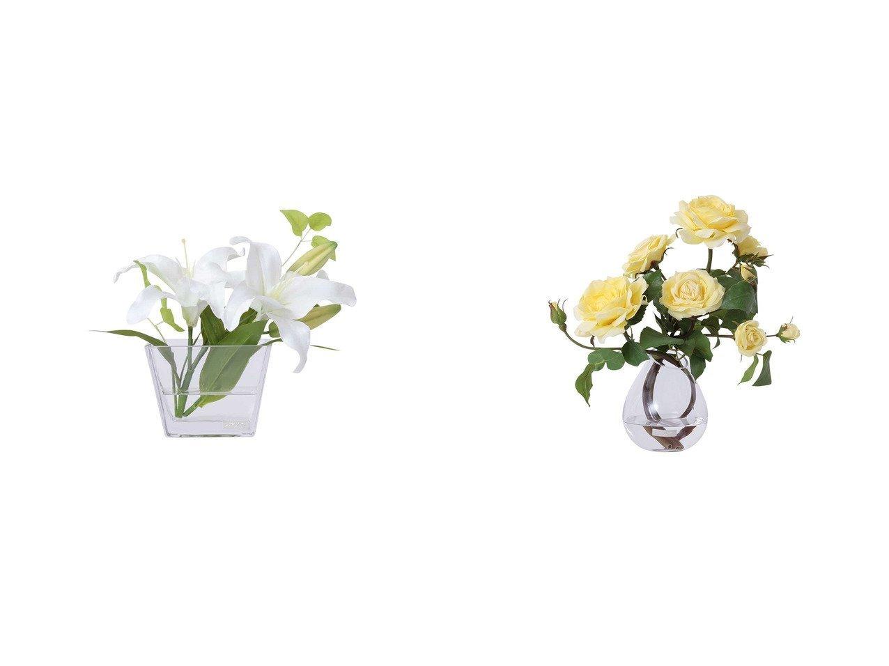 【EMILIO ROBBA/エミリオロバ】のカサブランカ #103115&プリマローズ #103129 【FURNITURE 花瓶・フラワーベース】おすすめ!人気、インテリア雑貨・家具の通販 おすすめで人気の流行・トレンド、ファッションの通販商品 インテリア・家具・メンズファッション・キッズファッション・レディースファッション・服の通販 founy(ファニー) https://founy.com/ 送料無料 Free Shipping イエロー ガーデン コレクション ローズ シリコン フラワー モダン  ID:crp329100000052379